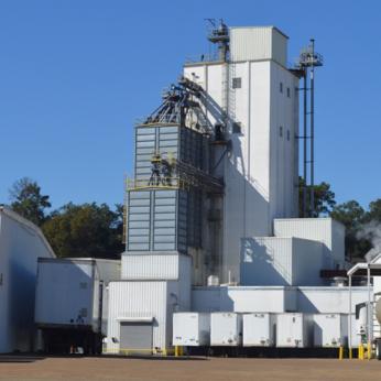 2010s-pf-plant